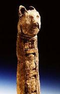 Mummie van een Kat.