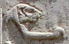 Oud-Egyptisch hieroglief van een leeuw.