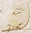 Oud-Egyptisch hiëroglief van een neus.