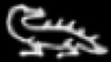 Oud-Egyptisch hieroglief van een veraan.