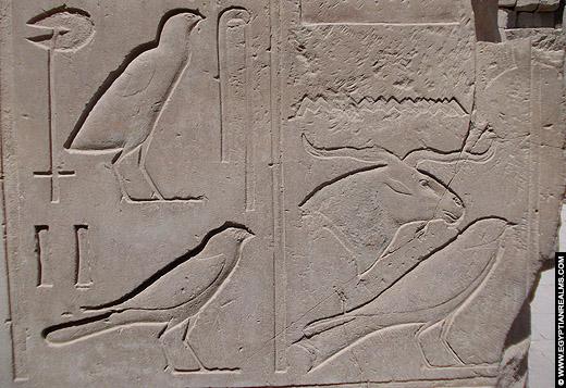 Hieroglief van de zwaluw afkomstig van de Karnak Tempel.