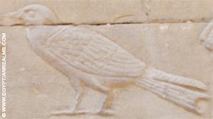 Oud-Egyptisch hieroglief van een specht.