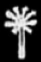 Oud-Egyptisch hieroglief van een palmboom.