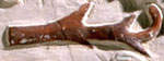 Oud-Egyptisch hieroglief van een twijg.