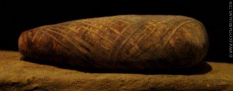 Egyptische mummie van een vogel.