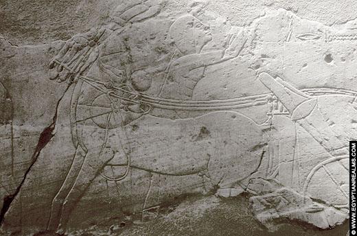 Oud-Egyptisch reliëf van een paard voor een strijdwagen.