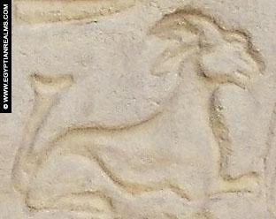 Oud-Egyptisch hieroglief van een ezel.