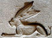 Oud-Egyptisch hieroglief van een haas.