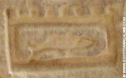 Oud-Egyptisch hieroglief van een embleem.