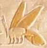Oud-Egyptisch hieroglief van een Bij.