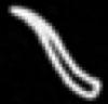 Oud-Egyptisch hieroglief van een horen.