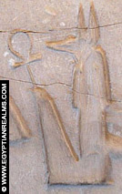 Oud-Egyptisch hieroglief van Anubis.