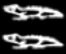 Oud-Egyptisch hieroglief van een krokodil.