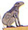 Oud-Egyptisch hieroglief van een kikker.