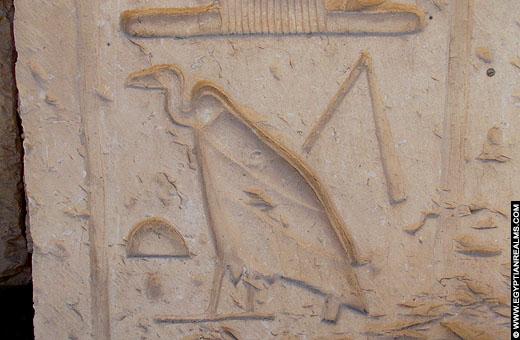Gier met dorsvlegel afgebeeld op een muur van de Abydos tempel.
