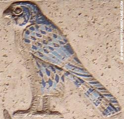 Oud-Egyptisch hieroglief van een valk.