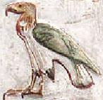 Oud-Egyptisch hieroglief van een arend.