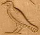 Oud-Egyptisch hieroglief van een adelaar.
