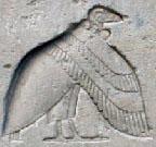 Oud-Egyptisch hieroglief van een gier.