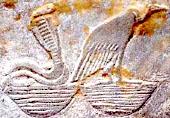 Oud-Egyptisch hieroglief van de gier.