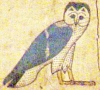 Oud-Egyptisch hieroglief van de uil.