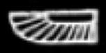 Oud-Egyptisch hieroglief van een vleugel.