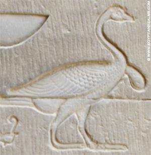 Oud-Egyptisch hieroglief van een gans.