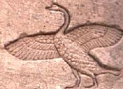 Oud-Egyptisch hieroglief van een zwaan.
