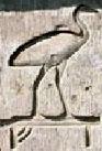 Oud-Egyptisch hieroglief van de Ibis.