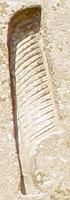 Oud-Egyptisch hieroglief van de veer.