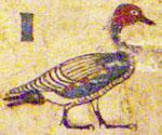 Oud-Egyptisch hieroglief van de gans.