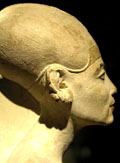 Nefertiti met lange schedel.