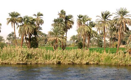 Grote Rivier de Nijl.