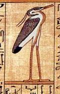 Bennu afgebeeld op Papyrus.