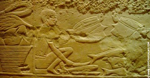 Egyptische man met vissen.