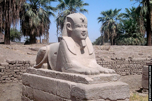 Avenue of the Sphinxes in 2014.