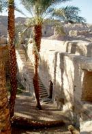 Heilig meer bij de Tempel van Dendera.