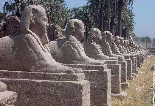 Beelden van de Sphinx langs de weg van de Luxor Tempel.