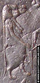 Sterrenbeeld Grote Beer afkomstig van de Zodiak te Dendera.