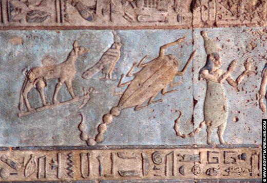 Sterrenbeeld Schorpioen afgebeeld op het plafond van de Dendera Tempel.