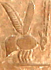 Hieroglyph Bee Tehenut.