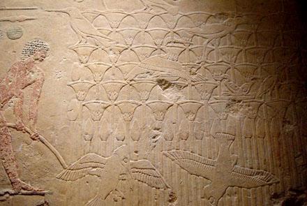 Papyrus planten afgebeeld op een muur.