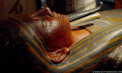 Deksel van een sarcofaagkist.