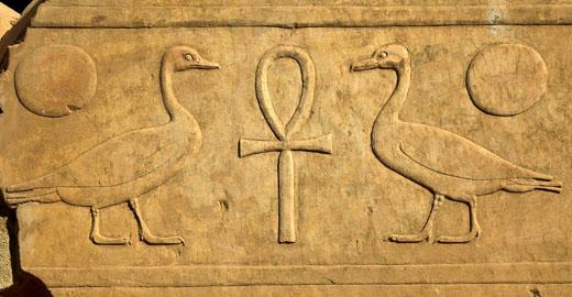 Hieroglief van de Gans met Ankh.