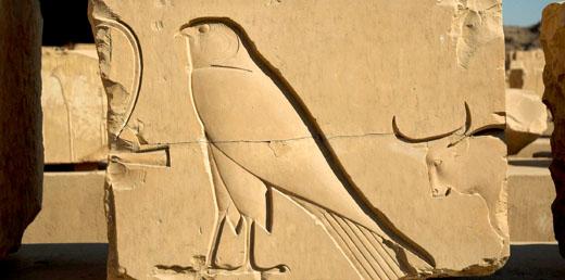 Oud-Egyptisch hieroglief van de Havik.