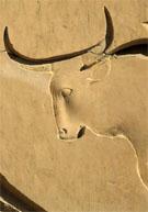 Oud-Egyptisch hieroglief van de Os.