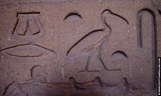 Hieroglief van de Ibis op de Esna Tempel.