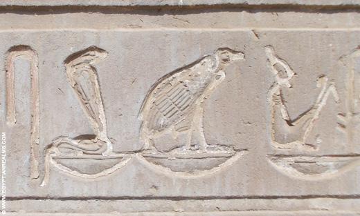 Hierogliefen van Cobra slang en Gier in de Kom-Ombo Tempel.