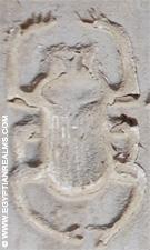 Relief van scarabee in de tempel van Kom-Ombo.