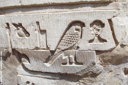 Hierogliefen op een muur van de Kom-Ombo tempel.